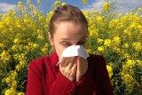 Pasangan bisa jadi penyebab kambuhnya alergi