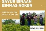 Personel Binmas Noken Polri berhasil tingkatkan kesejahteraan petani Papua