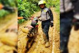 Telaah - Jejak Trail Supian Hadi