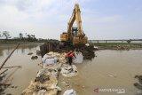 Pekerja dari Balai Besar Wilayah Sungai Cimanuk-Cisanggarung (BBWS) menggunakan alat berat memperbaiki tanggul sungai Cipanas yang kembali jebol di desa Puntang, Losarang, Indramayu, Jawa Barat, Minggu (28/2/2021). Tanggul Sungai Cipanas kembali jebol akibat tingginya debit air hingga menyebabkan banjir merendam empat desa di kecamatan Losarang. ANTARA JABAR/Dedhez Anggara/agr