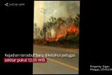 Info terkini: Kebakaran hutan di Kecamatan Gunung Kijang