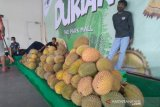 Dongkrak kunjungan, Mal The Park gelar festival panen durian