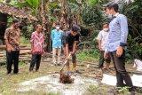 Mahasiswa UNS latih warga Karanganyar olah pupuk organik