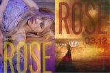 Rose BLACKPINK hingga IU siapkan luncurkan lagu baru Maret ini
