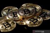 Inovasi dinilai dorong perkembangan  Bitcoin di tengah penurunan harga