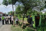 Dam truk pengangkut material Proyek KEK Mandalika masuk sawah