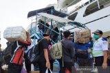 1.789 orang di Kotim jadi pengangguran selama pandemi COVID-19