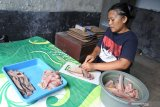 Seorang peternak lele memisahkan daging ikan dari tulang dan kulit (fillet) di industri rumahan aneka olahan lele Matrix, Sumbersari, Jember, Jawa Timur, Jumat (5/3/2021). Memasuki tahun kedua masa pandemi COVID-19 di Indonesia, pelaku UMKM di Kabupaten Jember, seperti peternak lele mengolah komoditas mereka sampai ke produk olahan dan memasarkannya secara daring. Antara Jatim/Seno/zk