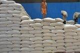 Pemerintah diminta tinjau kembali rencana impor beras