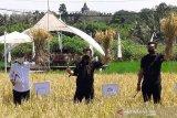 Mentan:  Svarga Bumi Borobudur bisa dikembangkan di daerah lain
