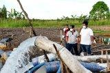 Gubernur tinjau kondisi saluran irigasi di Kapuas