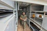 Apartemen Ayam untuk petani milenial