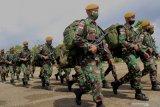 Pangdam IX/Udayana puji kinerja dari Satgas Pamtas RI-RDTL