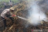 Upaya Pemadaman Karhutla Di Aceh Barat