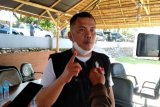DPRD Sulbar minta pemerintah cairkan APBD untuk penanggulangan gempa