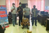 Bea Cukai dan BNNP Kalteng tangkap pemilik tembakau gorila