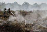 Prajurit TNI menyemprotkan air untuk memadamkan kebakaran lahan gambut di Desa Rimbo Panjang, Kabupaten Kampar, Riau, Selasa (9/3/2021). Satgas Karhutla Riau terus berupaya melakukan pemadaman kebakaran lahan yang masih terjadi di Provinsi Riau agar