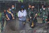 Danlantamal VIII Manado lakukan panen ikan di kolam Dispotmar