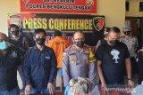 Bapak cabuli anak kandung di Bengkulu terancam 15 tahun penjara