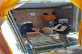 Sulawesi Tenggara ekspor gurita 66,8 ton ke Jepang dan Amerika Serikat