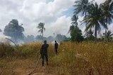Dalam sepekan terakhir 60 hektare lahan hutan di Bintan terbakar