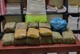 Polisi diminta tembak mati bandar dan kurir narkoba