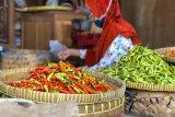 Harga cabai di pasar tradisional Yogyakarta tembus Rp120.000 per kilogram