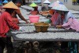 Stok ikan teri asin di Pulau Pasaran mulai melimpah