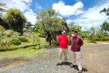 Kepala LKBN ANTARA Biro Kalsel Nurul Aulia Badar (kiri) berbincang bersama Direktur Utama Amanah Borneo Park Fatwa Aji Lanang Nugroho (kanan) saat melihat salah satu wahana yang berada di Amanah Borneo Park, Banjarbaru, Kalimantan Selatan, Sabtu (20/3/2021). LKBN ANTARA Biro Kalsel melakukan kunjungan ke tempat wisata Amanah Borneo Park sekaligus silahturahmi bersama jajaran direksi Amanah Borneo Park. Foto Antaranews Kalsel/Bayu Pratama S.
