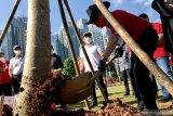 PDI-P tanam 300 pohon di GBK bantu penghijauan di ibu kota Jakarta