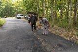 Pemkab Kulon Progo diminta prioritaskan pembangunan jalan Bukit Menoreh