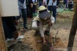 Balai Wilayah Sungai Kendari tanam 750 pohon pada Hari Air Dunia ke-29
