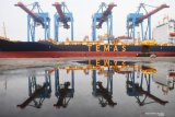 Peneliti: Pembatasan kuota impor justru berpotensi rugikan UMKM