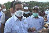 Menteri KP puji kebun pembibitan mangrove Bagek Kembar Lombok