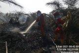 Titik api menurun, hujan bantu pencegahan karhutla Riau