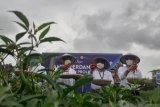 Panen perdana cabai merah Proliga di Batam