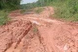 Kondisi Jalan PUPR Utama Mesuji makin rusak