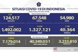 Kasus terkonfirmasi COVID-19 bertambah 4.461 orang dan sembuh 4.243 orang