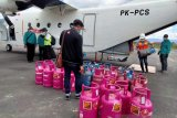 Pelita Air disarankan sasar penerbangan di wilayah terpencil
