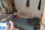 Densus tangkap seorang pria di Tinumbu terkait pembom Gereja Katedral