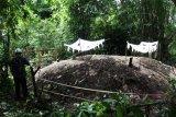 Ahli geologi mengambil foto tumpukan tanah makam yang meninggi di Nagari Sungai Asam, Kecamatan 2 x 11 Enam Lingkung, Padang Pariaman, Sumatera Barat, Senin (29/3/2021). Pihak Badan Pengkajian dan Penerapan Teknologi (BPPT) akan melakukan penelitian terhadap fenomena tumpukan atau pengelembungan tanah makam yang meninggi tersebut. ANTARA FOTO/Muhammad Arif Pribadi/rwa.