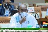 Dirut MIND ID buka opsi pembangunan smelter PT Freeport di Papua