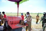 Gubernur resmikan kilang padi BUMDes Mekar Sari Jaya di Rohil