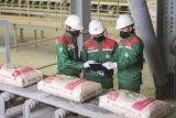 Semen Baturaja raup pendapatan Rp1,72 triliun di tengah pandemi