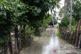 Puluhan rumah warga Sulamu diterjang gelombang pasang