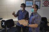 PLN unit induk pembangunan Maluku  dan Papua diresmikan
