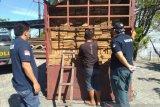 Balai Gakkum KLHK Sulawesi tahan pelaku perdagangan kayu dari Luwu Timur