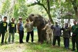 Komipo Indonesia gandeng RuKo salurkan bantuan ke PKG Way Kambas