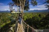 Sejumlah pengunjung menikmati pemandangan di puncak wisata kampung bambu, Desa Tandilang, Kabupaten Hulu Sungai Tengah, Kalimantan Selatan, Minggu (4/4/2021).  Wisata alam yang di kelola oleh warga setempat tersebut menawarkan pemandangan Pegunungan Meratus serta menyediakan tempat berfoto dan camping ground untuk menjadi daya tarik wisatawan. Foto Antaranews Kalsel/Bayu Pratama S.ANTARA FOTO/BAYU PRATAMA S (ANTARA FOTO/BAYU PRATAMA S)