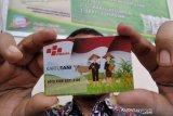 Baru 5,03 persen petani yang gunakan Kartu Tani untuk dapat pupuk subsidi
